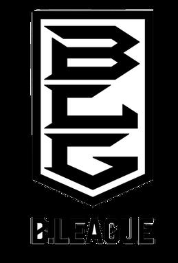日篮B1图标