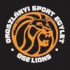 OSE狮队