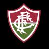 富明尼斯U19