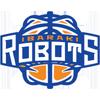 茨城机器人