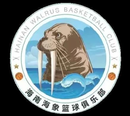 海南海口海象