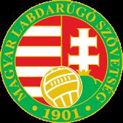匈U19图标
