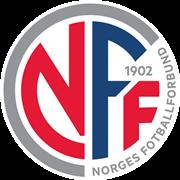 女挪威杯图标