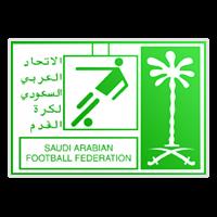 沙特乙图标