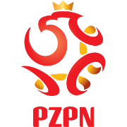 波兰丁图标