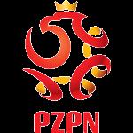 波兰U19