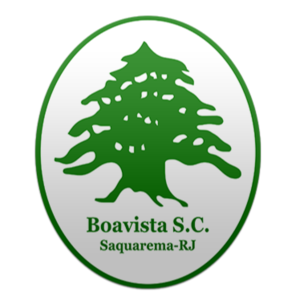 博阿维斯塔青年队