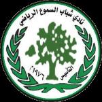 艾尔萨穆沙巴布