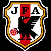 日本室内足球队