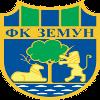 泽蒙FK U19