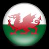 威尔士U16