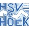 HSV胡克
