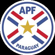 巴拉圭室内足球队