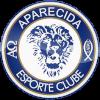 阿帕雷西达U20