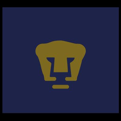 塔巴斯科美洲狮