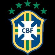 巴西室内足球队