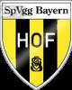 巴伐利亚霍夫