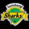 卡里班吉鲨鱼