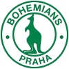 波希米亚人1905B队